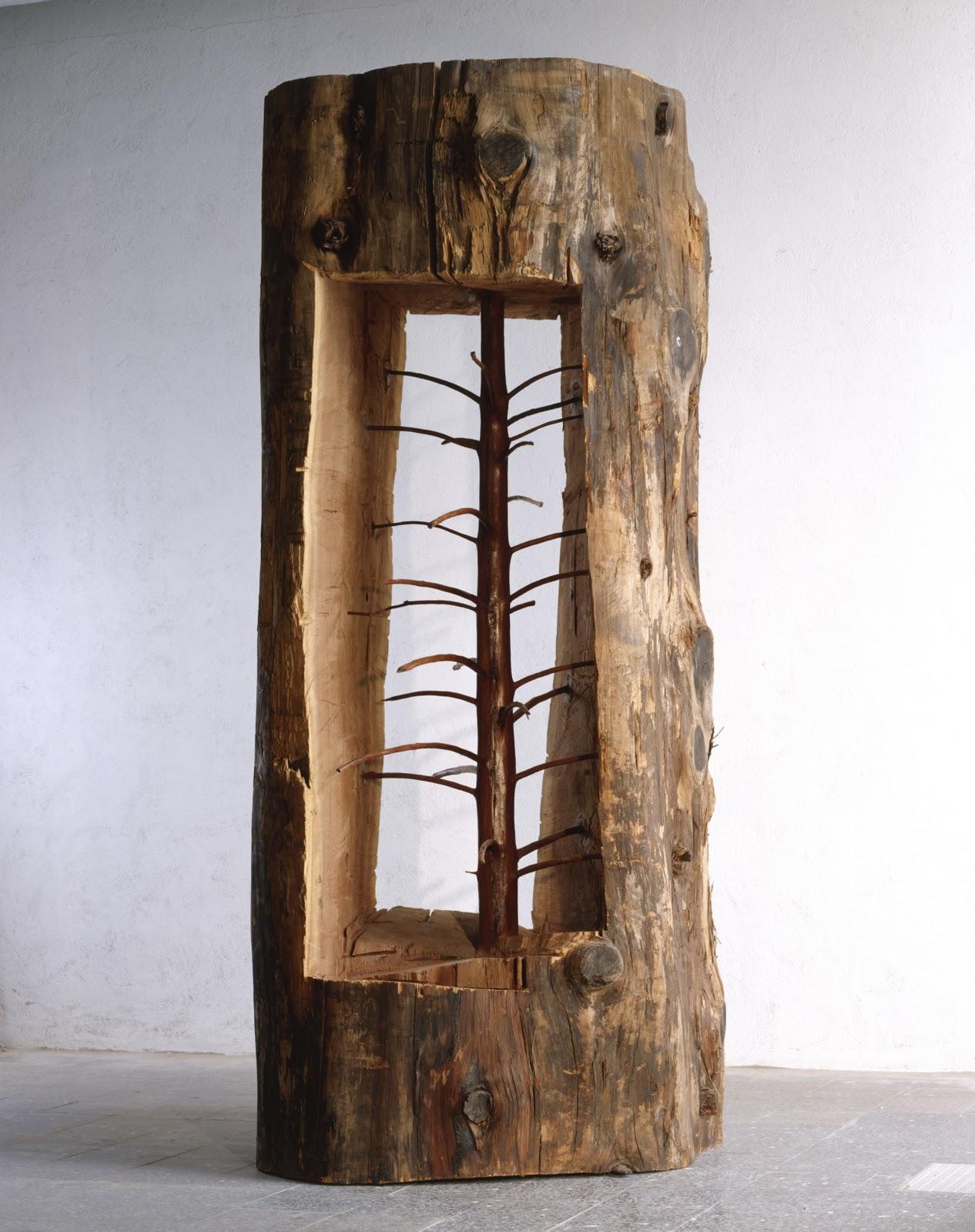 Albero porta -cedro, 2012