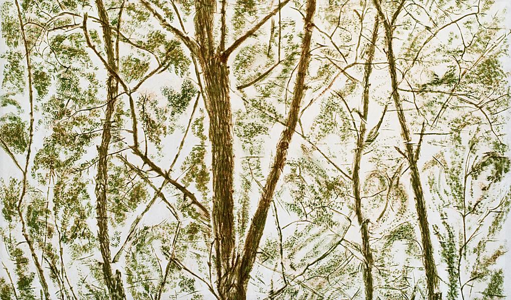 Giuseppe Penone,Verde del bosco, 1983 (particolare)